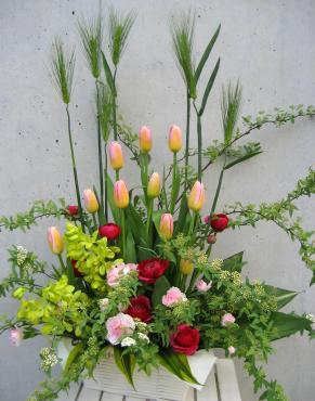 i麦、チューリップ(トムポース)、デンファレグリーン、ラナンキュラス(ラミア)、コデマリ