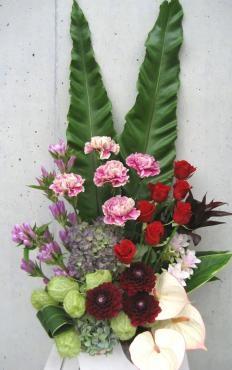 タニワタリ、カーネーション(アンティグア)、バラ、秋色アジサイ、ダリア、風船唐綿、アンセリューム