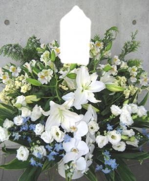 アルストロメリア、ユリ(カサブランカ)、トルコキキョウ、胡蝶蘭、デルフィニューム