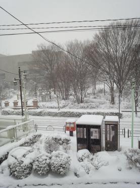 20140207雪の文化センター